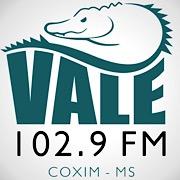 Vale 102 FM