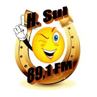 H. Sul 89 FM